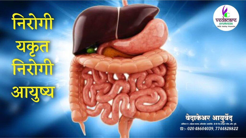 ayurvedic medicine for liver